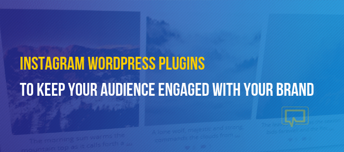 3 Instagram WordPress Plugins to Keep Your Audience Engaged With Your Brand